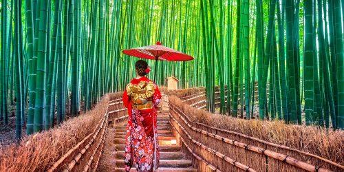 2021 oferta japonia travel collection agency sarbatoarea ciresilor infloriti circuit