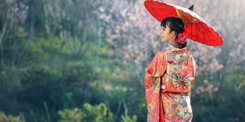 2021 oferta japonia travel collection sarbatoarea ciresilor infloriti