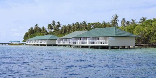 Embudu Village maldive oferta travel collection agency