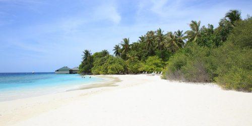Embudu Village resort maldive travel collection agency