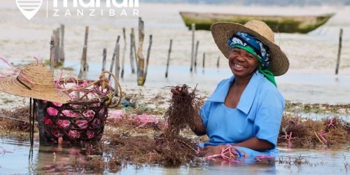 Mahali Zanzibar travel collection charter direct
