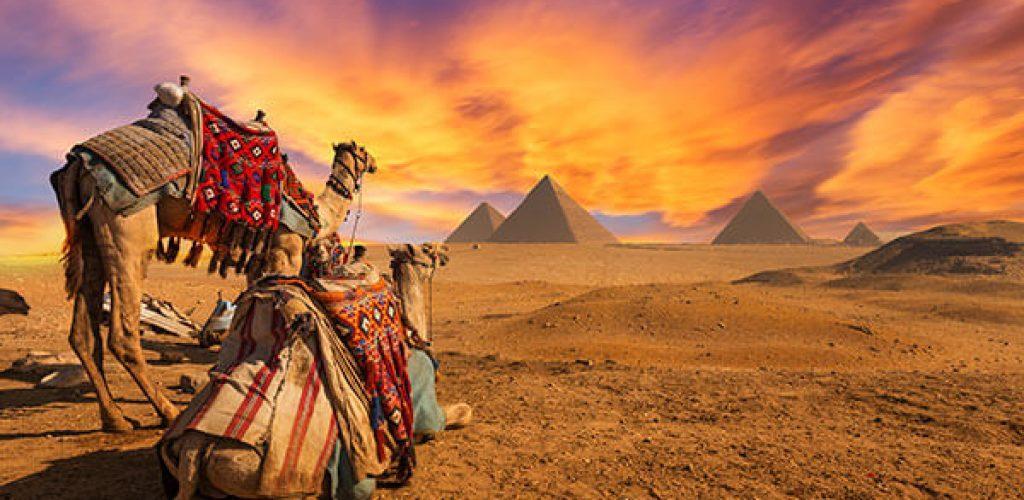 banner-revelion-avion-egipt