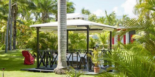 hotel riu baibou punta cana republica dominicana travel collection agency charter direct