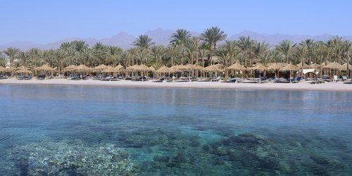 oferta egipt revelion sharm el sheikh travel collection