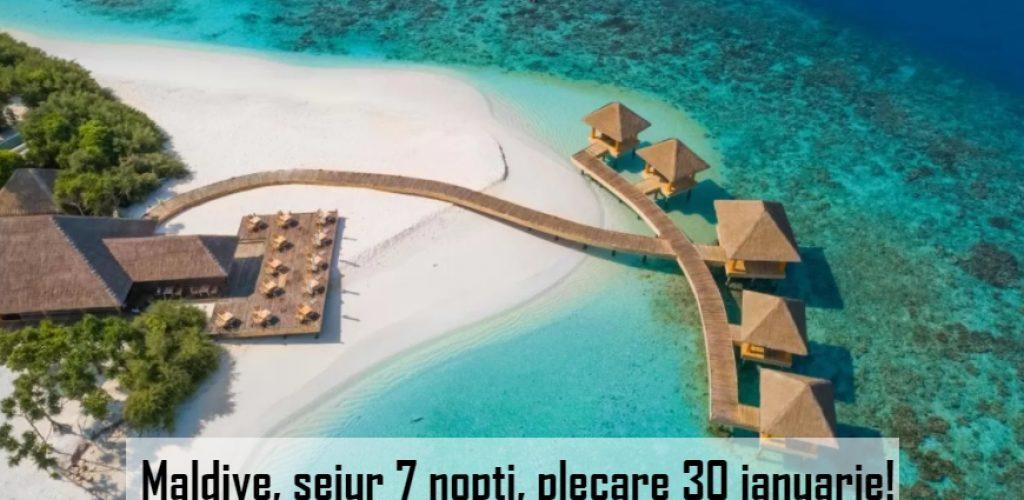 oferta maldive travel collection
