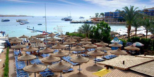 oferta travel collection agentie de turism baciu rodica travel consultant oferta revelion egipt sharm el sheikh