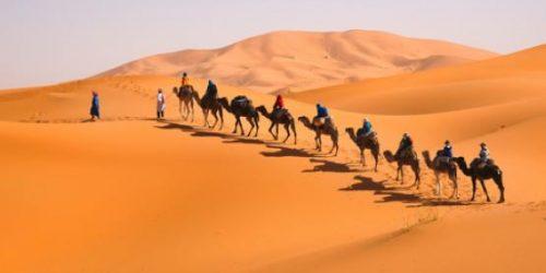 t5-circuit-maroc-marrakech-si-sahara-226434