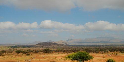 travel collection agency kenya & safari oferta africa 2021 exotic